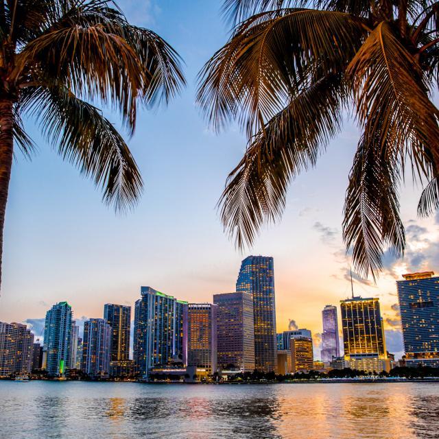 Newsletter do Loving Florida