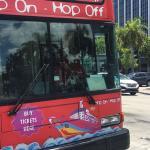 Hop on Hop off Miami