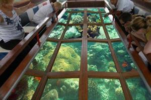 Go Miami Card boat glass