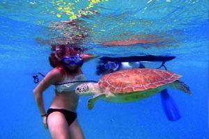 miami pass snorkel