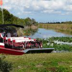 Everglades de Miami