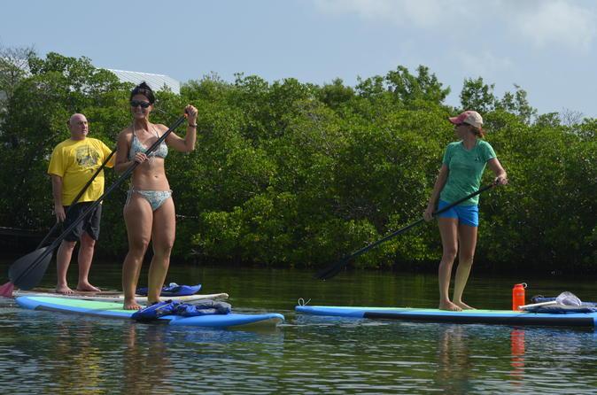 o que fazer em key west stand up paddle