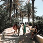 Melhores passeios em Miami